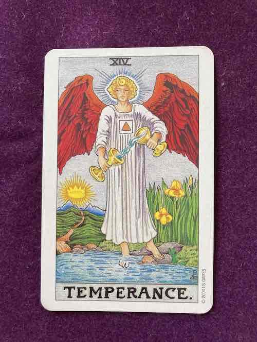 カード de 瞑想