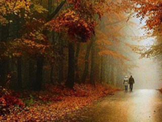 朝から始まる秋の恋
